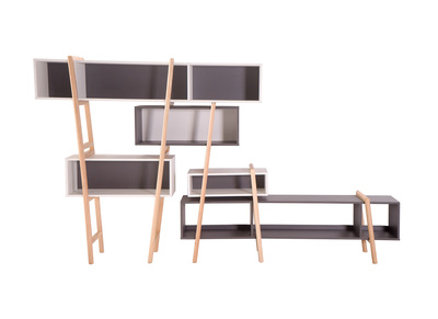 Modern Bookcase WOOD TANG Composition 7