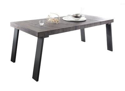 Modern Wenge and Metal Dining Table ORIGIN